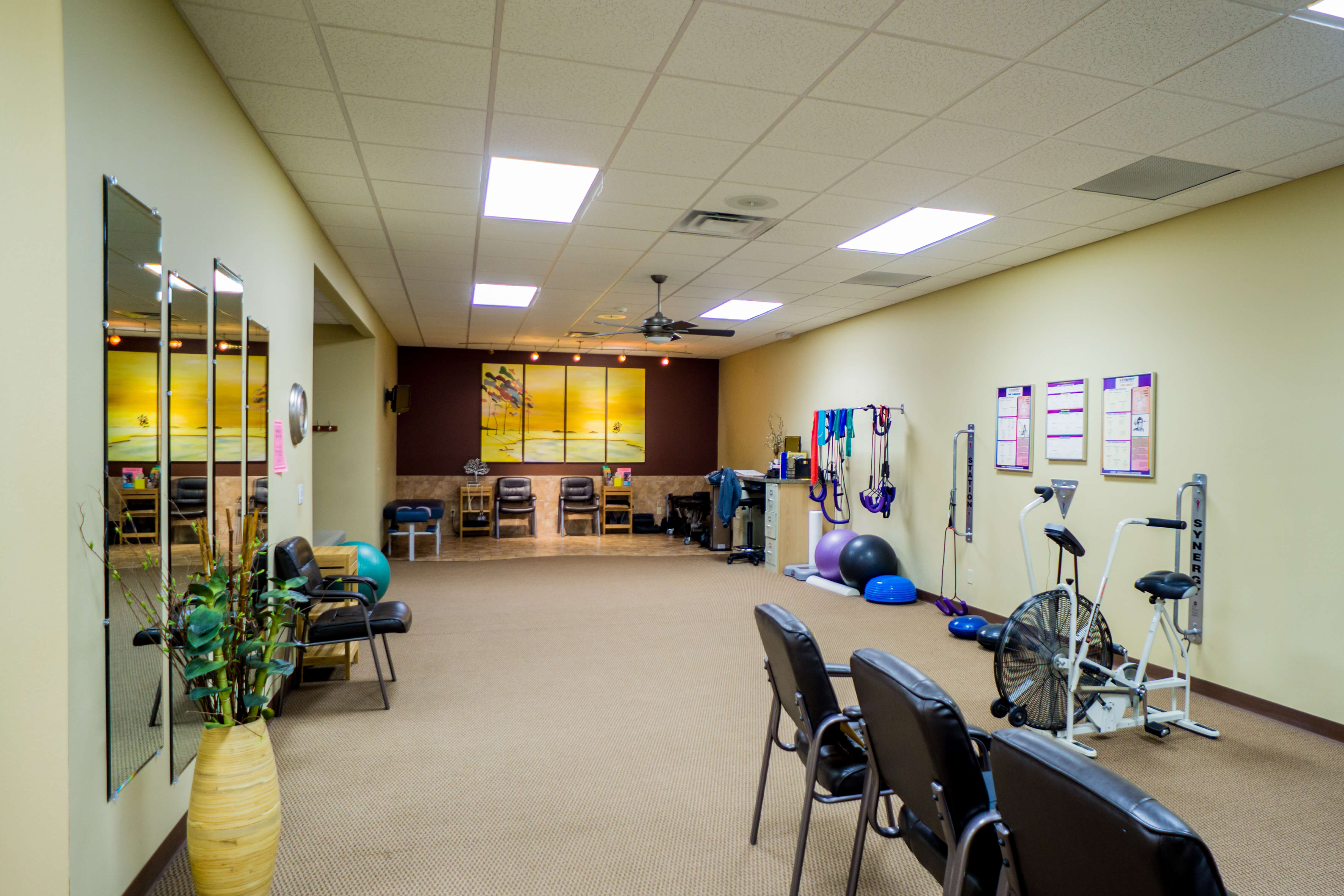 Carlson Chiropractic Center - Rehabilitation Room
